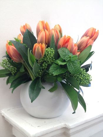 Beautiful orange & peach coloured spring tulips & mint bouquet in cool contemporary white surroundings Fresh Bouquet White Color White Background Green Color Mint Peach Color Orange Color Colour Tulips EyeEm Selects Freshness Leaf Plant Plant Part Indoors  Flower Nature No People Still Life Flower Arrangement Flower Head Beauty In Nature