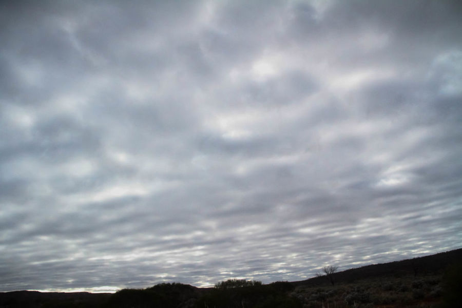 Nullarbor Plain Nullarbor Nullarbor Plain Cloud - Sky Sky Beauty In Nature Scenics - Nature Tranquil Scene Tranquility Nature No People Outdoors Non-urban Scene Environment Landscape Day Land