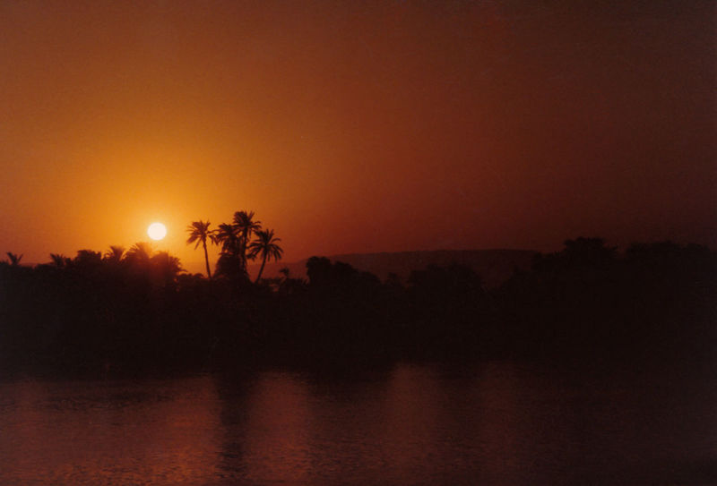 Sea Water Sun Sunset Nature Sky Tree Silhouette Outdoors Tranquility Palm Tree Clear Sky Scenics Beauty In Nature No People Palm Trees ❤❤ Orange Color Tranquil Scene River Nile Luxor, Egypt Nile Sunset HUAWEI Photo Award: After Dark
