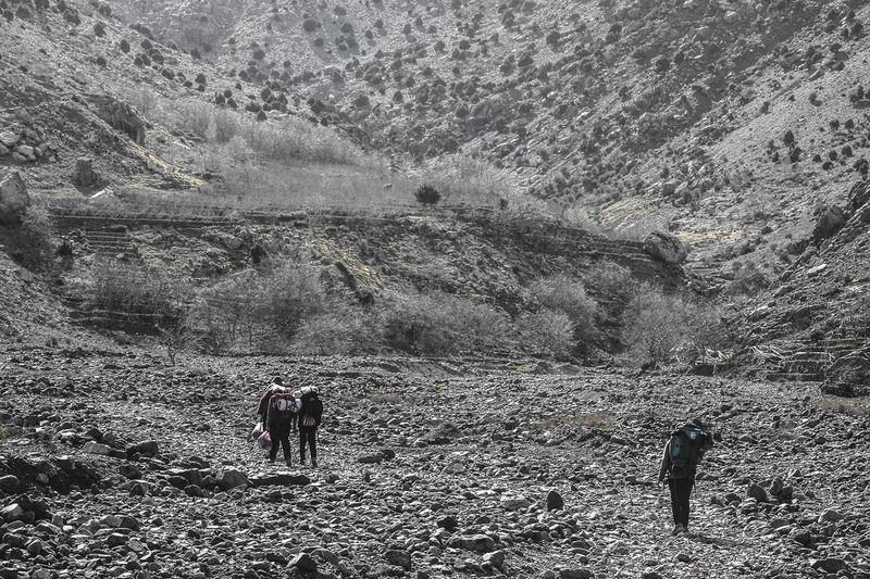 People walking on land