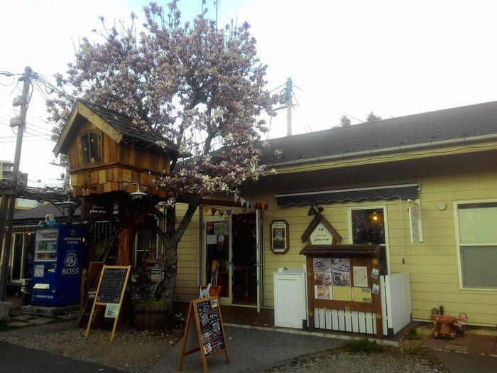 Tree House Johnson Town Saitama , Japan Cute♡
