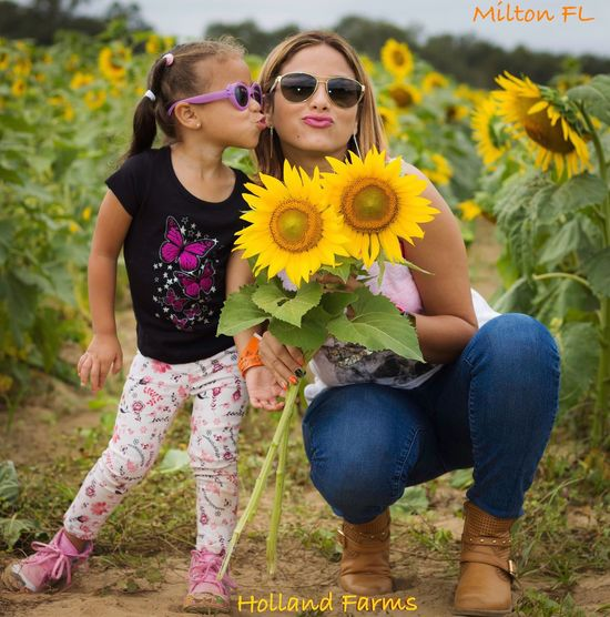 Sunflowers Field Mother & Daughter Smooches Sunglasses On Sunflowers