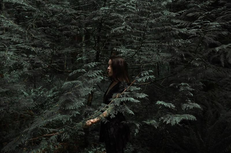 Young woman standing amidst trees in forest