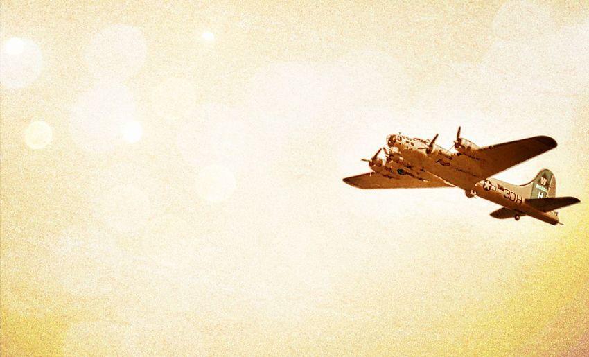 Air Force Airforce Airplane AirPlane ✈ Close-up Denver Denver Colorado  Military No People Old Plane Plane Still Life Vignette Vintage