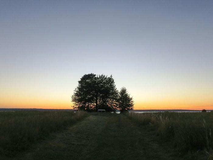 Landscape Stone Cist Evening Sky Evening Light Cycling Visingsö Amazing View