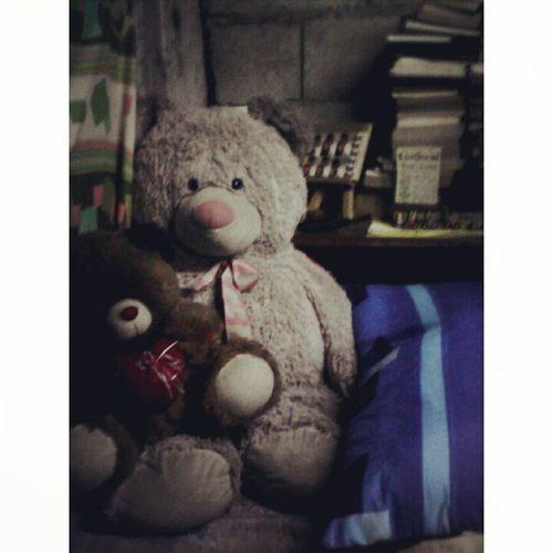 Myloves. ?❤? TeddyBearDay
