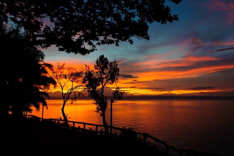 Sunset Tree Orange Color Silhouette Beauty In Nature Nature Scenics Tranquil Scene Sea Sky Dramatic Sky Tranquility Cloud - Sky No People Water Reflection Outdoors Travel Destinations Horizon Over Water Day
