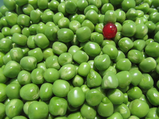 Odd one out Currant Food Green Green Color Green Peas Odd One Out Peas Pease Red Currant Vegetable