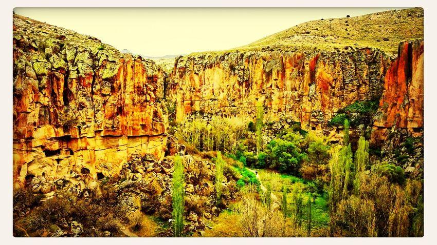 Turkey Canyon
