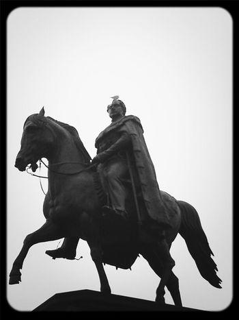 Streetphotography Blackandwhite Köln Reiterdenkmal