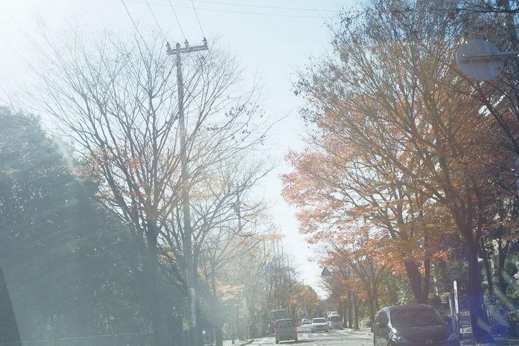 Streetphotography Taking Photos Enjoying Life Hello World ELMARIT-M 28mm F2.8 Fujifilm X-Pro1