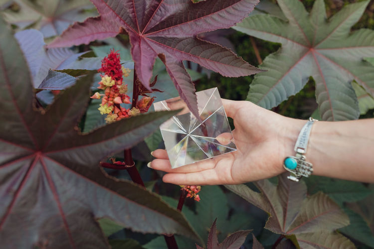 Cropped hand of woman holding pyramid crystal outdoors