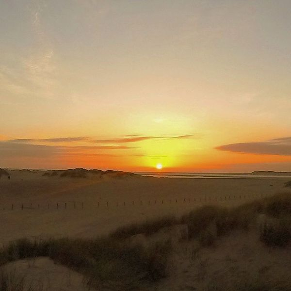 Another day another sunset 🌅 Sunset Beach Sea Sky Skyporn Summer Sun Landscape Borth Wales Walk Goprohero Gopro Goprooftheday Photooftheday Instagramers Instalike Instagood Instadaily Instamood Likes Instafollow Likes4likes Follow4follow Followme likeforlike follow kodak_photo theboss_photos