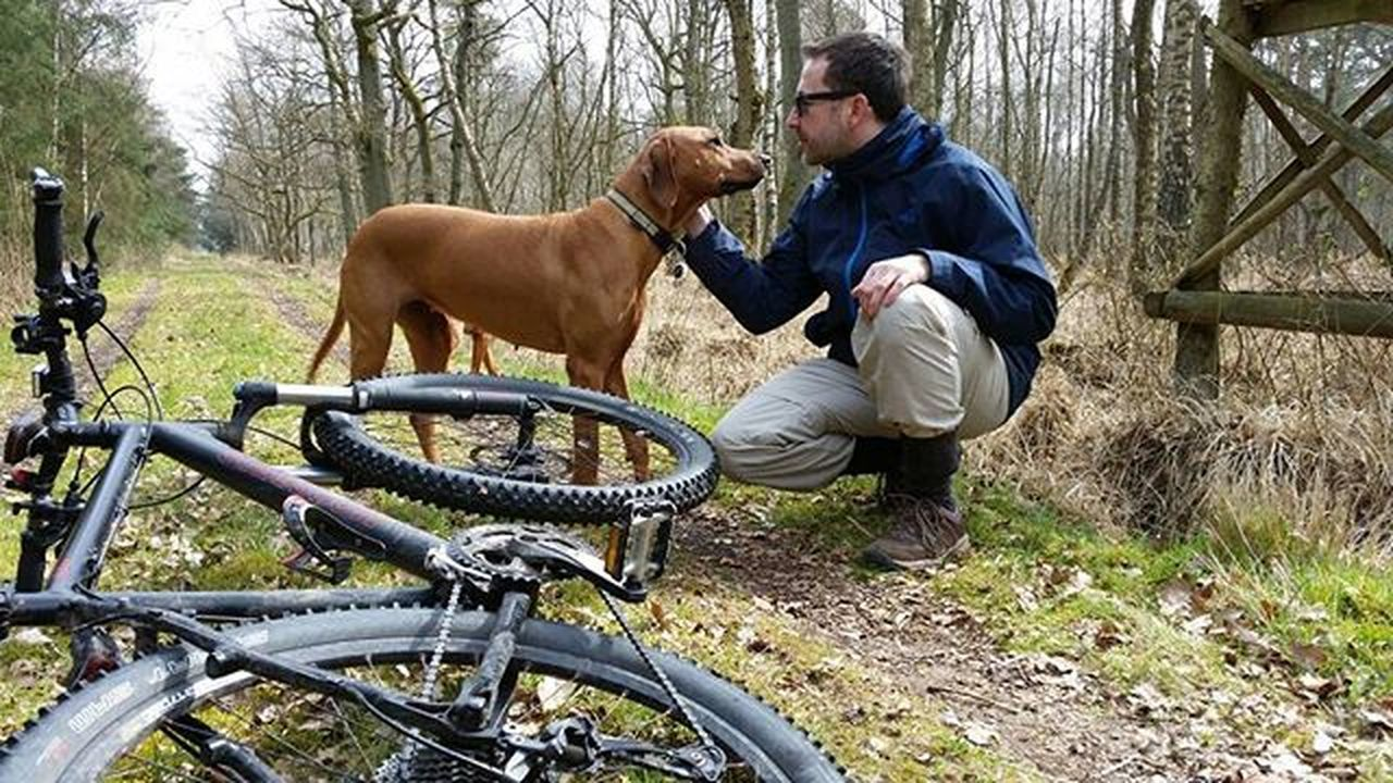 one animal, domestic animals, dog, only men, one man only, pets, bicycle, cycling, adult, one person, adults only, mammal, riding, mature adult, people, leisure activity, outdoors, day, livestock, men, nature, tree, warm clothing