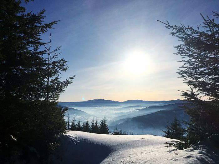 Mountain Beauty In Nature Nature Scenics Sunlight Cold Temperature Tree Snow Tranquil Scene Sun Sunbeam No People Sky Winter Moldova Peace Chilling Relaxing First Eyeem Photo EyeEmNewHere
