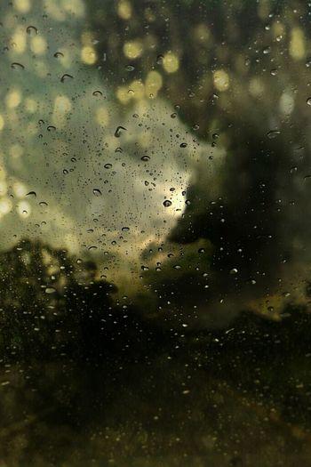 As The Rain Falls Bokeh Blast