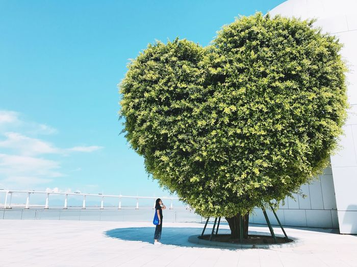 Woman standing by heart shaped tree against sky