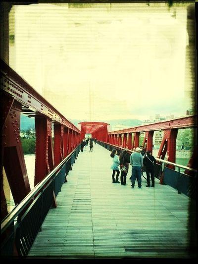 Bridge Railway Puente Pont