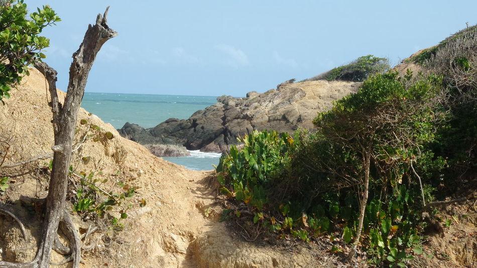 Trinidad And Tobago Samsung Kzoom At The Beach Taking Photos No Edit/no Filter Toco