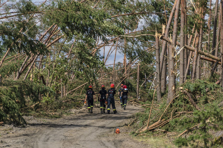 Firefighters during a rescue operation in Chojnice (Pomerania) - removing trees after a hurricane Cyclone Teamwork Damaged Day Disaster Disaster Area Firefighters Forest Full Length Hurricane Outdoors Real People Rescue Rescue Action Tornado Damage Tree Walking