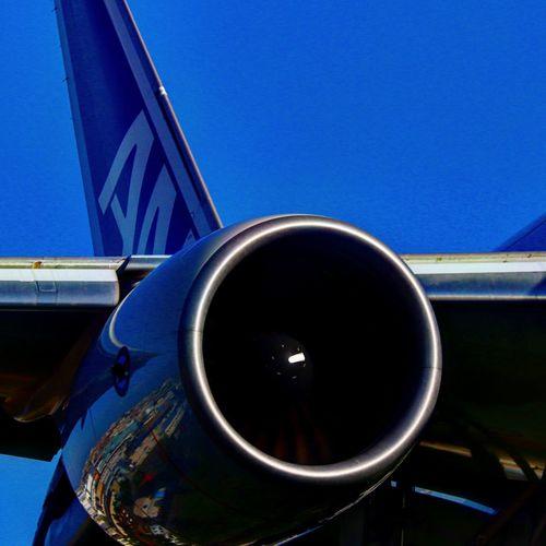 伊丹空港千里川堤防より Ana 飛行機大好き 飛行場 伊丹空港 千里川 Transportation Blue Airplane Sky Clear Sky Jet Engine Engine