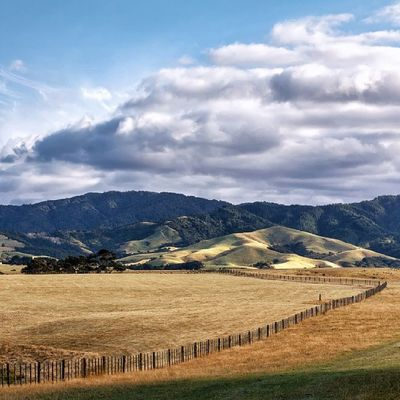 Golden farm lands of Orere winding up to the Hunua ranges (great place to go hiking). Literally just up the road from where I took the 'Isle' photo. Almost did some property damage spinning the car around to get get thus shot. Good light waits for no one. Newzealand Landscape Aoteoroa Photography clouds travel auckland sky sunshine goldenhour luminous summer sol skyporn