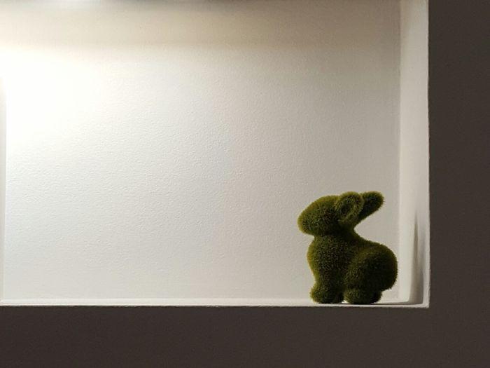 Moss rabbit in niche