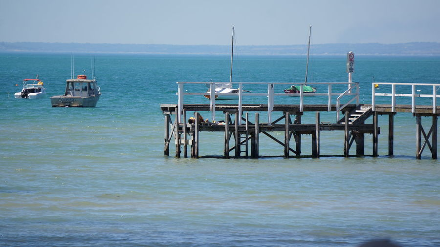 A Pier in Sorrento on a sunny day Australia MelbournePhotographer Beauty In Nature Clear Sky Day Horizon Over Water Nature Nautical Vessel No People Outdoors Scenics Sea Sky Sorrento Tranquility Transportation Water Waterfront