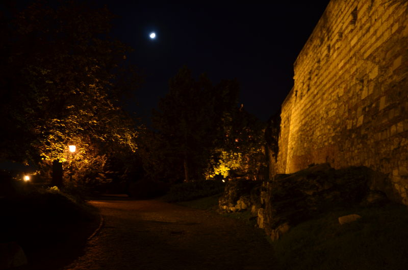 Budapest Castle Moon Night Rock Rock Wall Stone Wall The Way Forward Tree Hungary