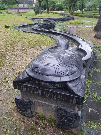 a statue of turtle EyeEm Gallery After Rain Statue Garden Photography Water Grass