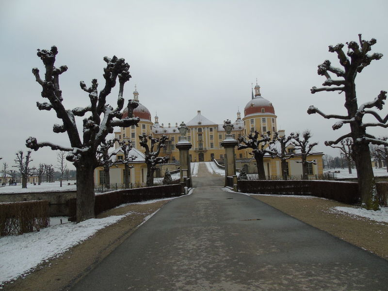 Dresden, Castle Architecture Beautiful Beautiful Nature Building Exterior Built Structure Castle City Dresden Famous Place Germany Historical Historical Building Historical Monuments Historical Place History Tower Travel Destinations Trees Winter Wintertime