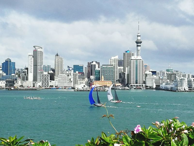 Sailing Boats Harbour Auckland New Zealand Blue Seas Sailing Yacht Cityscape Skyline Hello World Taking Photos from the Devonport Wharf Clouds And Sky Outdoor Photography Ocean View