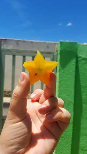 Close-Up Of Hand Holding Starfruit