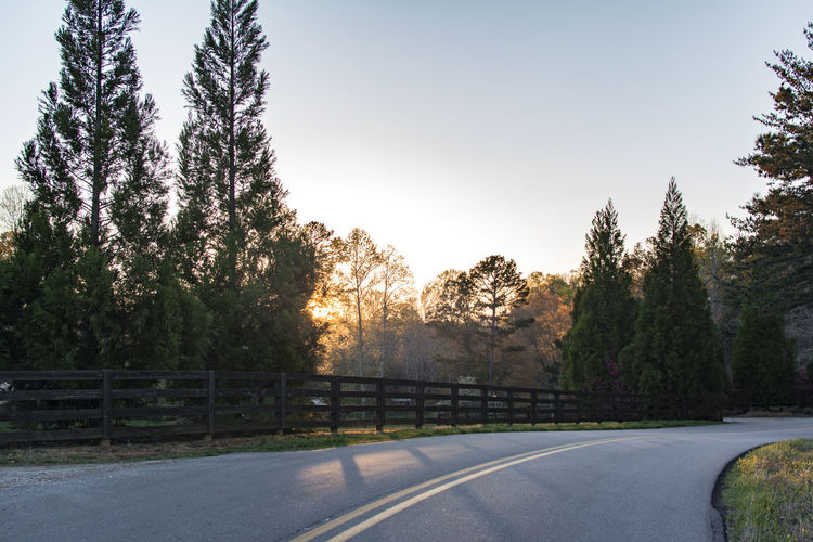 Beauty In Nature Country Road Countryside Diminishing Perspective Empty Empty Road Growth Idyllic Landscape Long Nature No People Non-urban Scene Outdoors Road Scenics Sky Sun Sunlight Sunset The Way Forward Tranquil Scene Tranquility Tree Vanishing Point