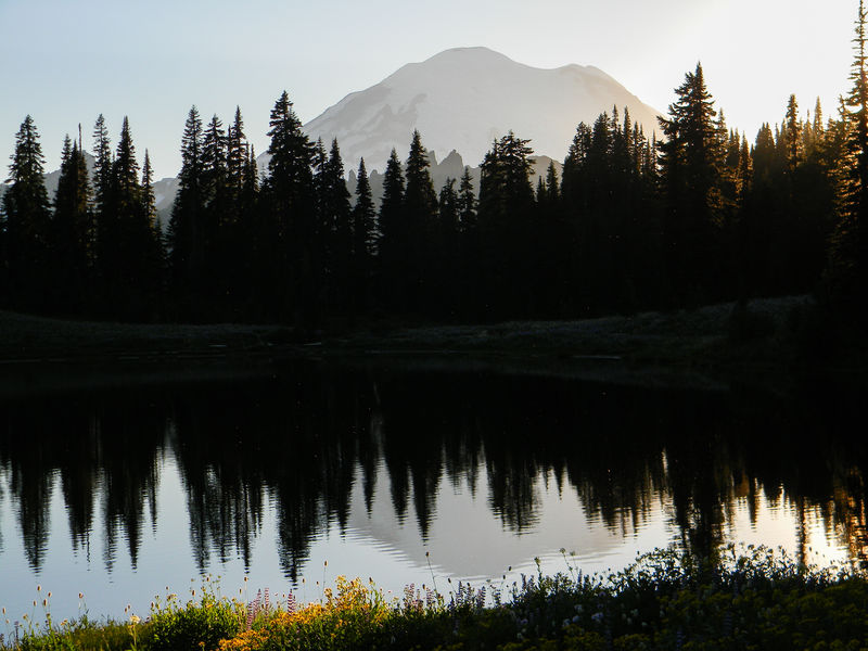 Beauty In Nature Fine Art Photography Lake Scene Magenta Mountains Mt. Rainier Reflection Sunset