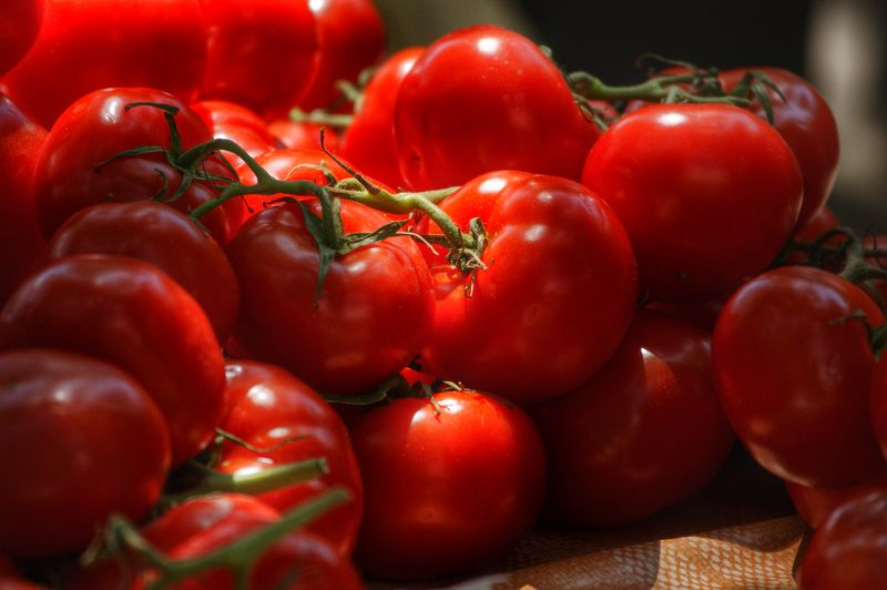 Detail shot of tomatoes