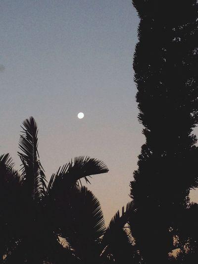 Lua , óh lua Prafecharatarde  Apaixonante Lua  Perfeito ???