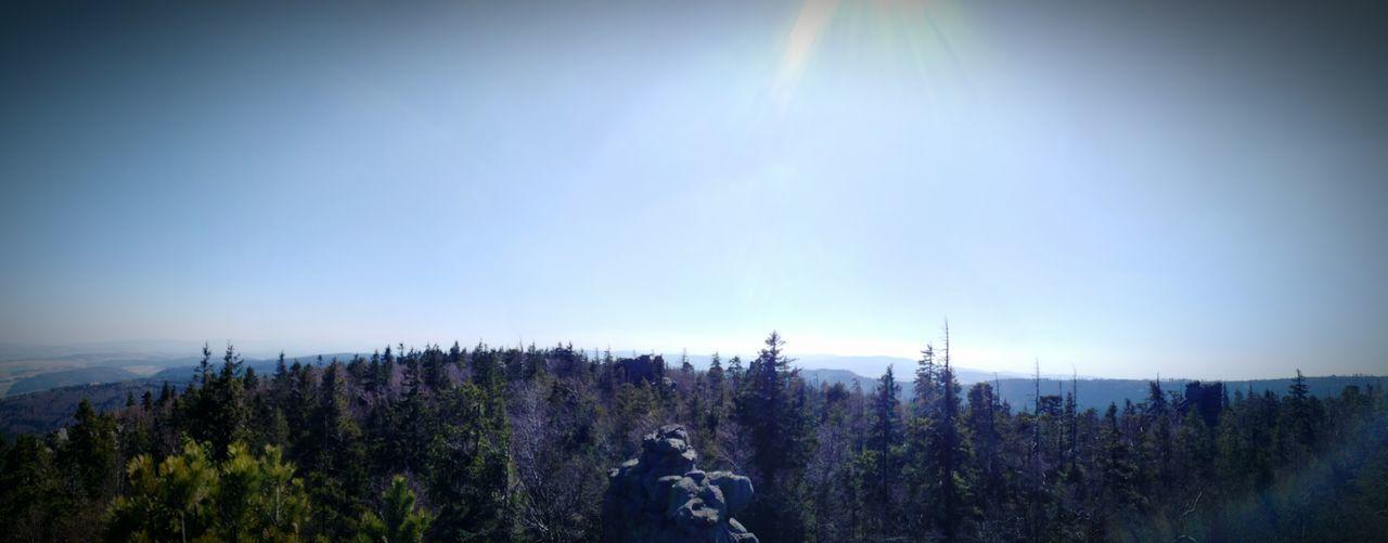 Mountain 3M4R