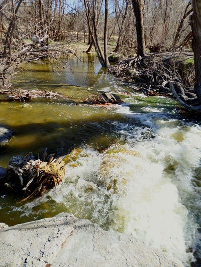 Quality has many meanings. What does it mean to you? Q Quality Time Beautiful Day Photography Nature Photography Naturelovers Westtexas Treescollection Beginnerphotographer Rushing Water Beautiful View Enjoying Life Q