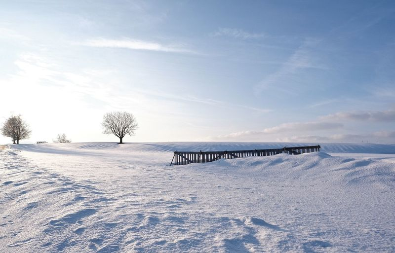 Cold Temperature Winter Snow White Color Sky Tranquil Scene Landscape Tree Outdoors Bare Tree Frozen No People