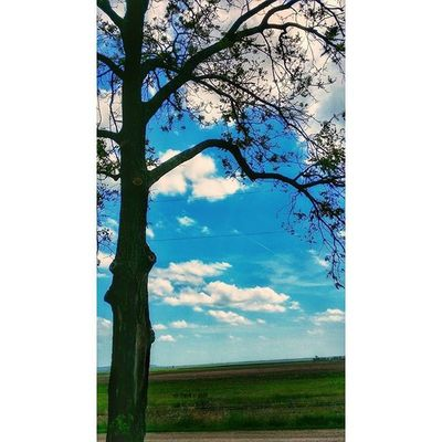 Kansas countryside in Donipham yesterday........ Ks_pride Ipulledoverforthis Trb_country Worknforthat8day12hrwalktocolorado