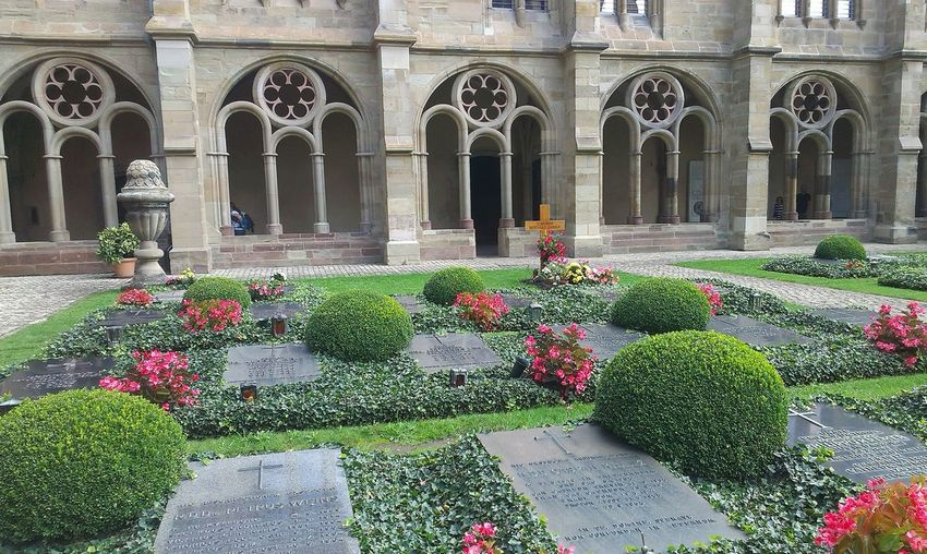 Flower Arch Architecture Plant No People Architectural Column Outdoors Day Graveyard Gravestone Traveling Trier City Trier, Germany's Oldest City Travel Destinations Beauty In Nature Grass