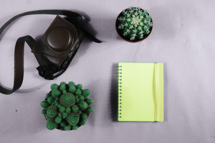 Directly Above High Angle View Studio Shot Close-up No People Desk From Above Notepaper Plant Cactus Leather Bag Camera Bag Work Taste Of Travel Text Space Notebook Yellow Color Pink Background Journalist Equipment Tourism Camera - Photographic Equipment Ready To Go Plants Desk Full Frame