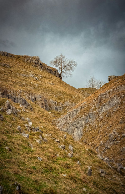 Malhamdale. Taking Photos Landscape Landscape_Collection Landscape_photography Landscapes Nature Nature Photography Walking Yorkshire Photography Countryside Composition Nature_collection Naturelover Outdoors Outdoor Photography Outdoor Pictures Rocks Tree Cloudy Weather Clouds Sky
