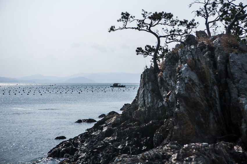 Haenam Land End Village Korea Sea Pine Tree Rock Coast Ship