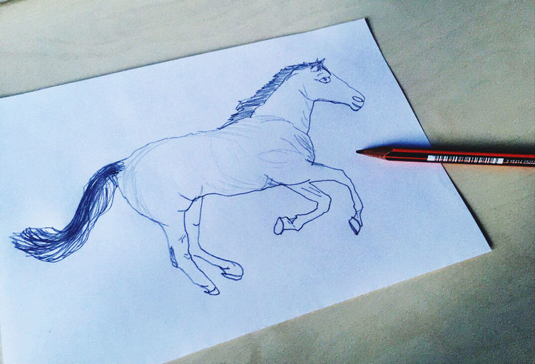 High angle view of drawing on paper
