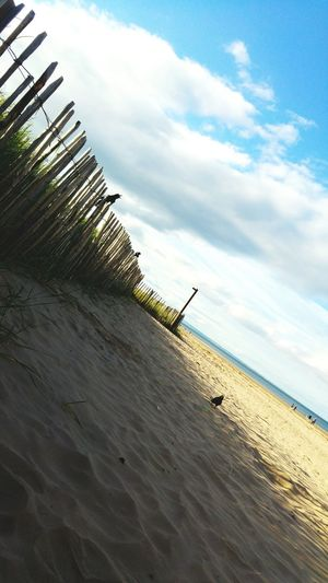 Cloud - Sky Beach Sand Sky Day Outdoors Nature Fence Wooden Birds Crows Dunes Grassland Blue Sky Cloudscape Screaming Calling 3XSPUnity