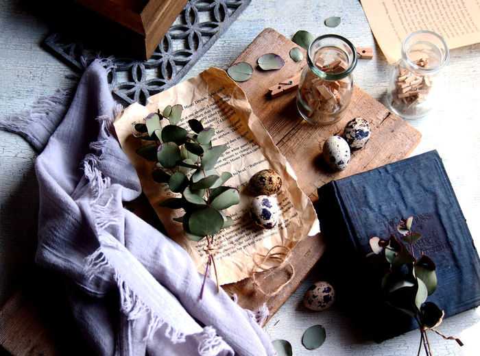 Book Close-up Directly Above Dried Plant Egg Flower Flowering Plant Focus On Foreground High Angle View Indoors  Nature Rustic Style Still Life Table Takasaki