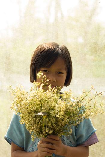 Branch Cherry Blossom Flower In Bloom Neem Flowers Neem Tree Person Student
