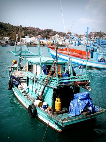 let's go catching some squids Ship In Search Of Squid Sea Life Vietnam